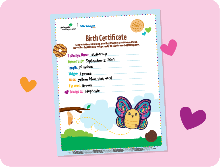 Butterfly Birth Certificate